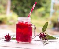 Suco de Roselle com flor Foto de Stock Royalty Free