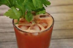 Suco de tomate congelado fresco Imagem de Stock
