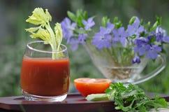 Suco de tomate, em um suporte no jardim Fotos de Stock Royalty Free