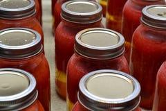 Suco de tomate enlatado fresco Imagem de Stock Royalty Free