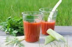 Suco de tomate fresco com salsa e aneto Fotografia de Stock Royalty Free