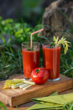 Suco de tomate nos vidros Imagem de Stock Royalty Free