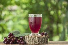 Suco de uva fotografia de stock