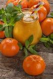 Suco do Tangerine fotos de stock