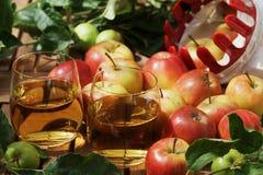 Suco e maçãs de maçã imagem de stock royalty free