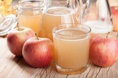 Suco e maçãs frescos de maçã fotografia de stock royalty free
