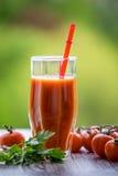 Suco e tomates de tomate em um fundo verde imagem de stock