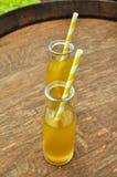 Suco em umas garrafas com palhas Foto de Stock Royalty Free