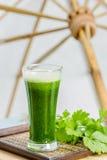 Suco vegetal verde com aipo fresco Imagem de Stock