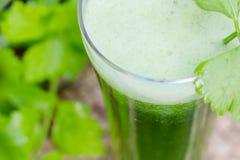 Suco vegetal verde com aipo fresco Fotografia de Stock