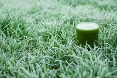 Suco verde saudável da desintoxicação Imagem de Stock Royalty Free