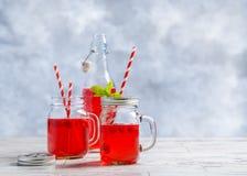 Sucos de fruta do verão Foto de Stock Royalty Free
