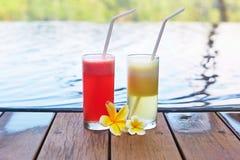 Sucos frescos deliciosos da melancia e de abacaxi Imagens de Stock