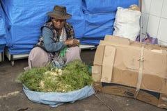 SUCRE BOLIWIA, SIERPIEŃ, - 07, 2017: Niezidentyfikowani bolivian sprzedawcy przy Środkowym rynkiem w Sucre Fotografia Royalty Free
