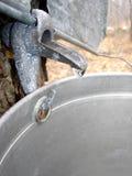 Sucre-cabane. photos libres de droits
