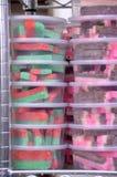 Sucrerie de noix de coco photographie stock libre de droits