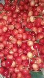 Sucreries d'été du jardin Photographie stock