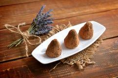 Sucreries faites maison de Vegan dans la poudre de cacao avec le bouquet de lavander Images libres de droits