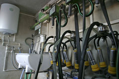 Suction Milking Machines. New suction Milking Machines installed on farm Royalty Free Stock Photography