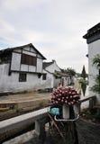 Sud du fleuve de Yang Tsé Kiang Image libre de droits
