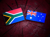 Sudafricano immagine stock libera da diritti