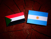 Sudan flag with Argentinian flag on a tree stump. Sudan flag with Argentinian flag on a tree stump Royalty Free Stock Images