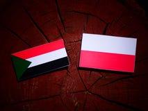 Sudan flag with Polish flag on a tree stump isolated. Sudan flag with Polish flag on a tree stump royalty free illustration
