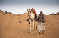 Sudanese man with his camel Stock Photography