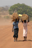 Sudanese women. Sudanese people walk the highway to Juba carrying their wares Stock Image