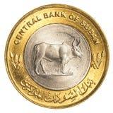 25-sudanische Piaster-Münze Lizenzfreies Stockfoto