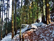 A sudden transition from autumn to winter in the area of the canyon of the Sitter river and reservoir Gubsensee stock images