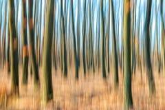 Suddig abstrakt bild av en skog i hösttid Royaltyfri Foto