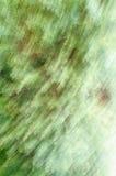 Suddig bakgrund av naturen Arkivbilder