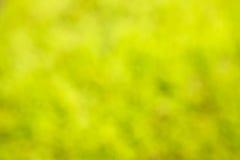 Suddig bakgrund för sommar av gräsplan- och gulingfärger Arkivfoton