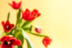 Suddig blom- bakgrund med röda tulpan på gul bakgrund Arkivfoton