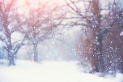 Suddig julbakgrund med träd, fallande snö Arkivbilder