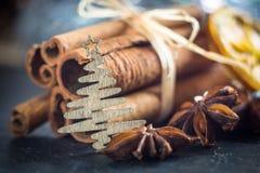 Suddig makroanis och julträd Royaltyfria Foton