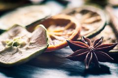 Suddig makroanis och torr apelsin- och äppleskiva Royaltyfria Bilder