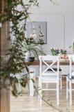 Suddig närbild av en växt med en stol bredvid en äta middag tabell i bakgrunden Verkligt foto av en matsalinre fotografering för bildbyråer
