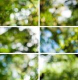 Suddig naturlig bakgrund för abstrakt bild Arkivfoto