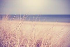 Suddig sommarstrandbakgrund i retro tappningstil Arkivfoton