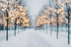 Suddig vinterträdgränd med fallande snö och skinande bokeh för julljus arkivfoton