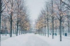 Suddig vinterträdgränd med fallande snö och skinande girlander i skymning royaltyfri fotografi