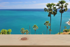 Suddiga palmträd slösar havs- & himmelbakgrund med tomt trä Arkivfoto