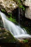 suddighet vattenfall Arkivbilder