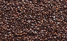 suddighett kaffe för bakgrund edges bönan den selektiva fokusen Royaltyfri Bild