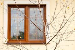 Suddigt fönster bak avlövat träd Royaltyfria Foton