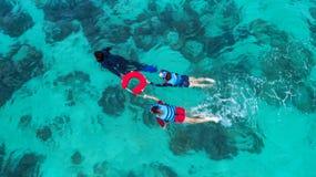 Suddigt folk för bakgrund som simmar i havet Flyg- sikt, överkant Fotografering för Bildbyråer