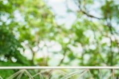 Suddigt: Grönt abstrakt begrepp av suddighetsnatursolljus med bokeh och Royaltyfri Bild