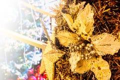 Suddigt julträd, snö, jul, bakgrund royaltyfria foton